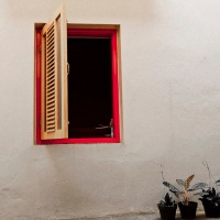 Jendela dan tanaman dalam pot