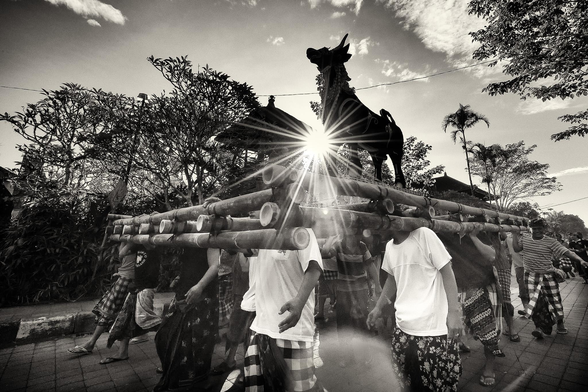 Lembu Dan Matahari