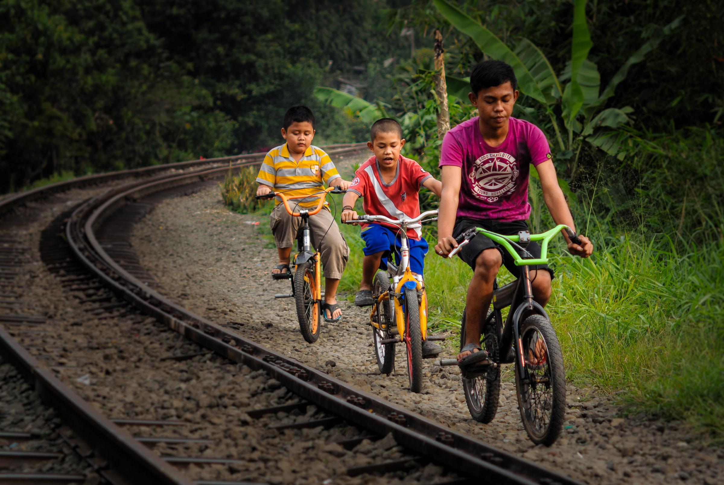 Bogor Survey