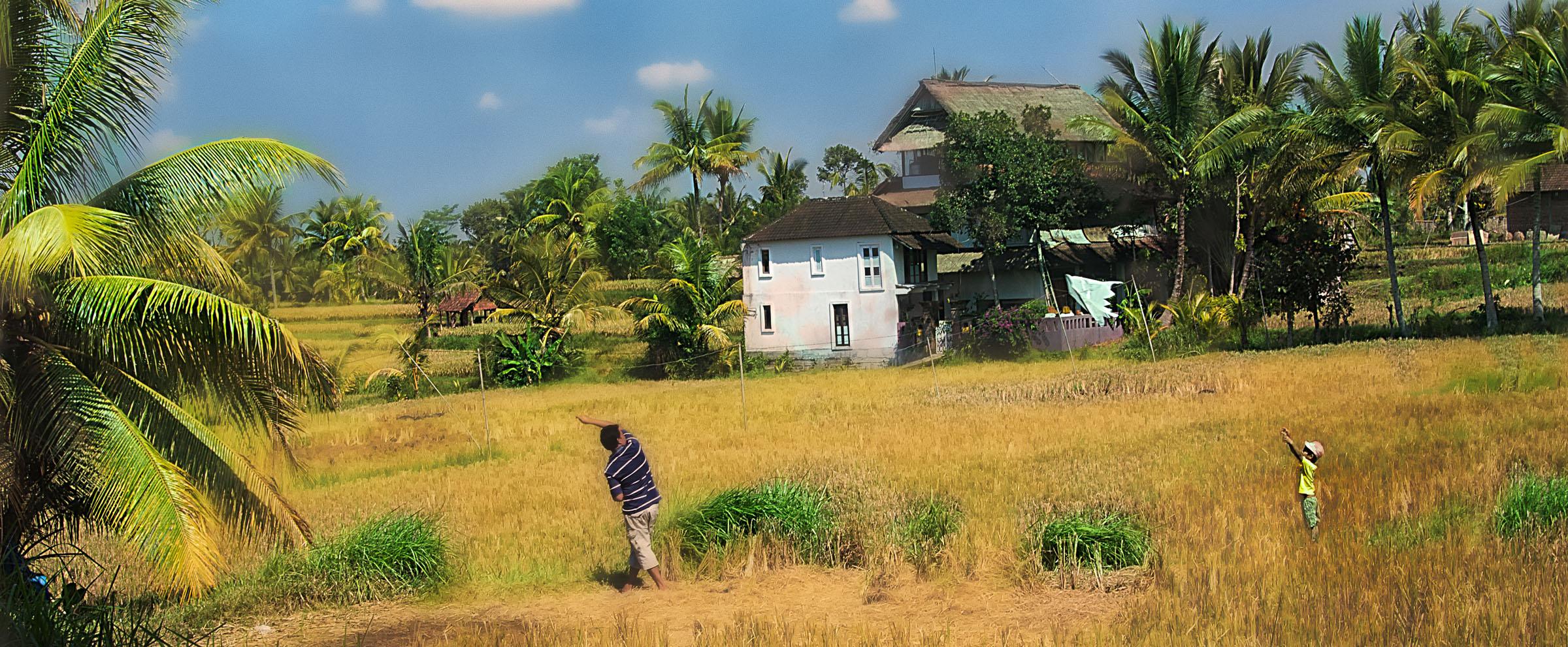 Bali Ubud - Iksa Menajang