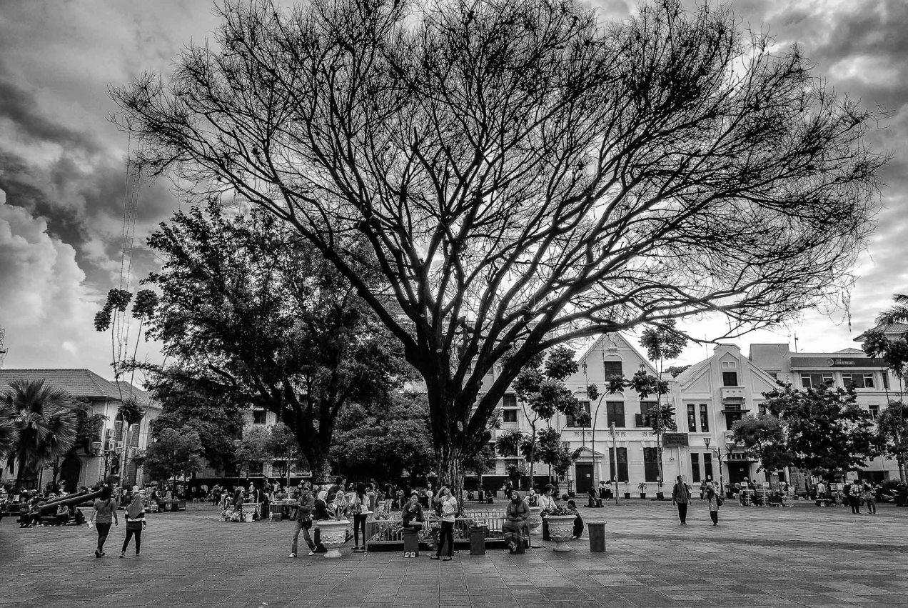 Fatahillah Park - Iksa Menajang